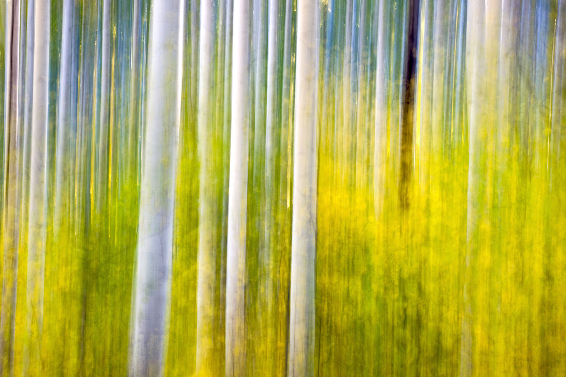 Abstract landscape image